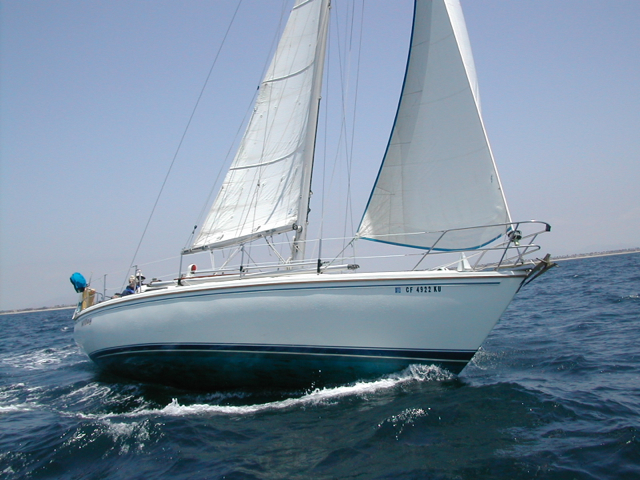 Wiley is the perfect boat for economy sail charter