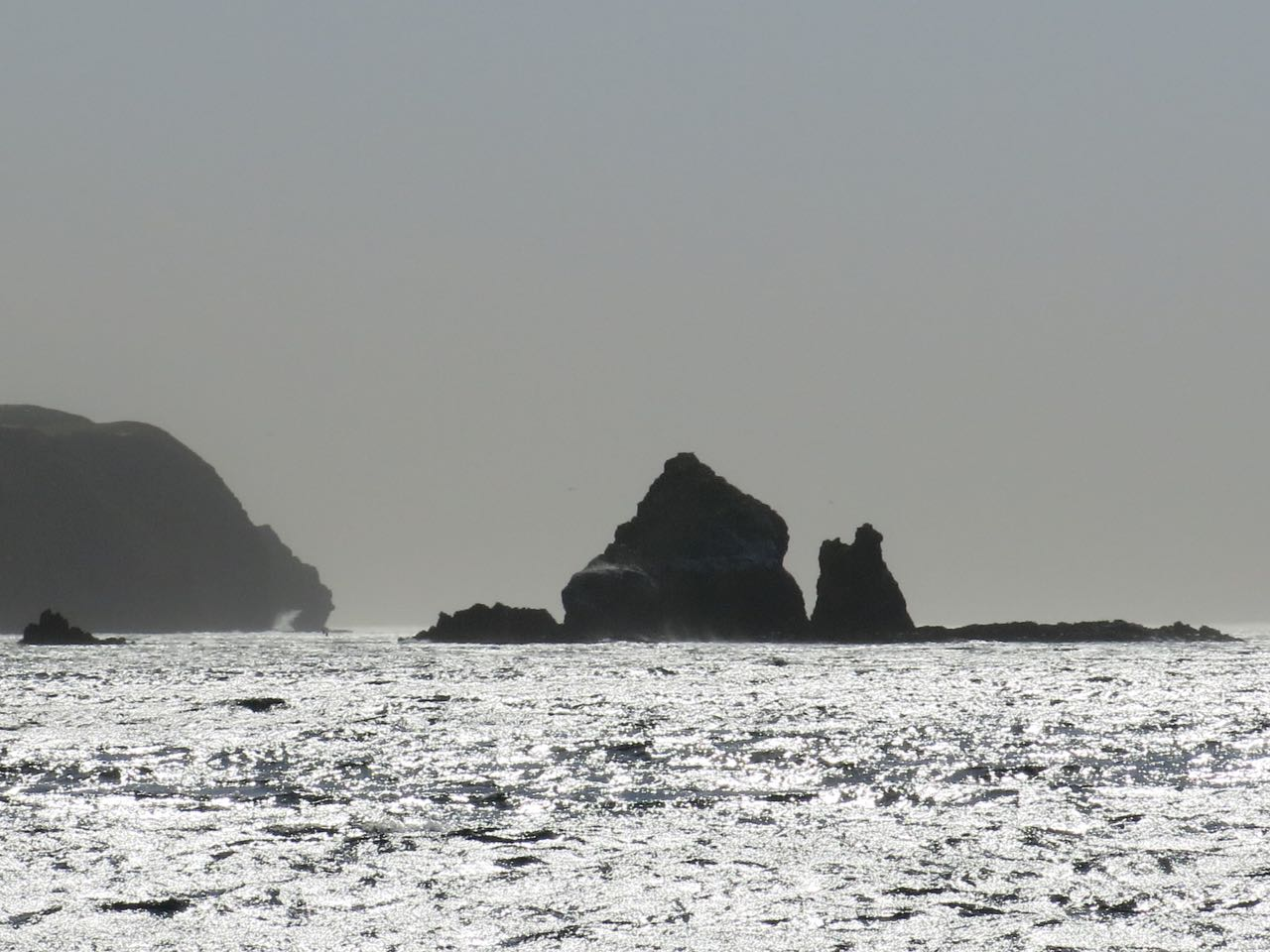 Go to Cat Rock on Santa Cruz Islands with Capt. Dan Ryder and Sai Channel Islands