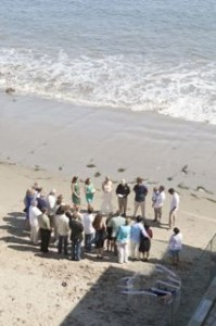 This California wedding on the beach had no flower girls, but it did have a whale for a witness.