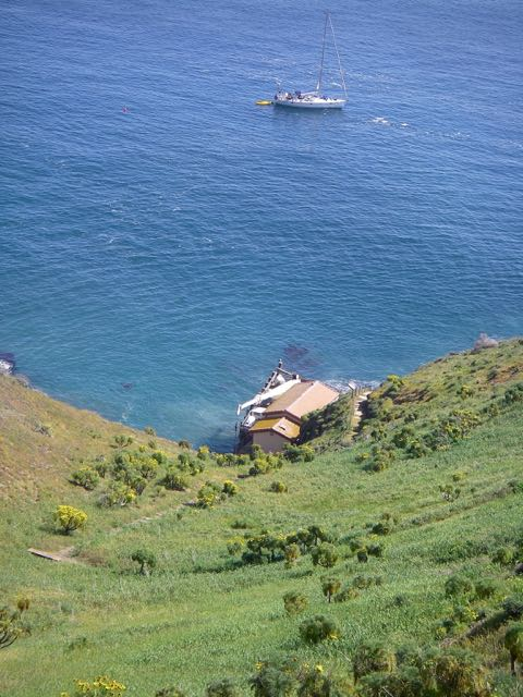 Picture Of Sail Channel Islands Day Tours: Sail Channel Islands