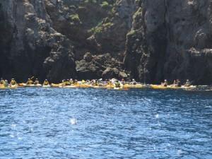 Kayak gaggle near Landing Cove, Anacapa